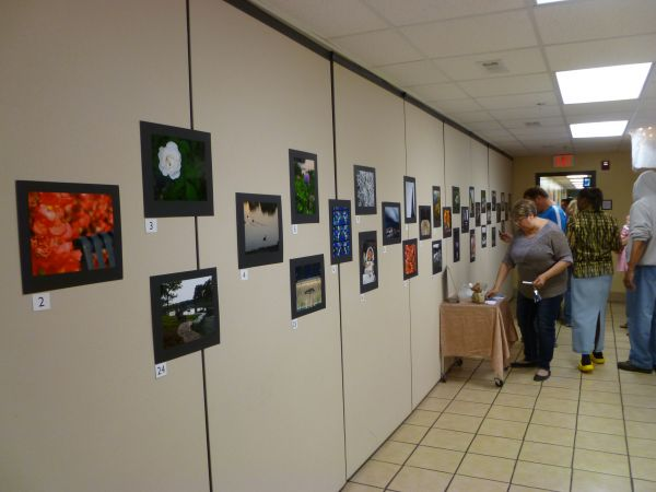 Art show gallery wall